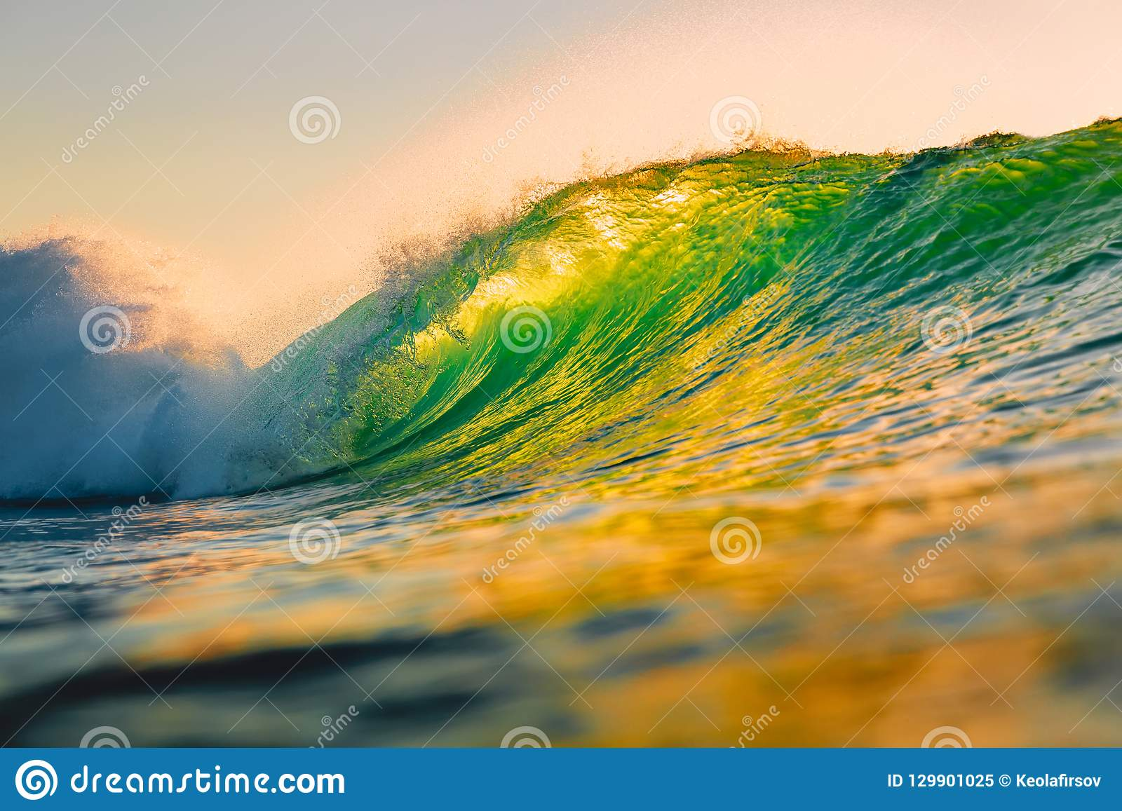 Ocean barrel wave at sunset. Perfect wave for surfing in Hawaii