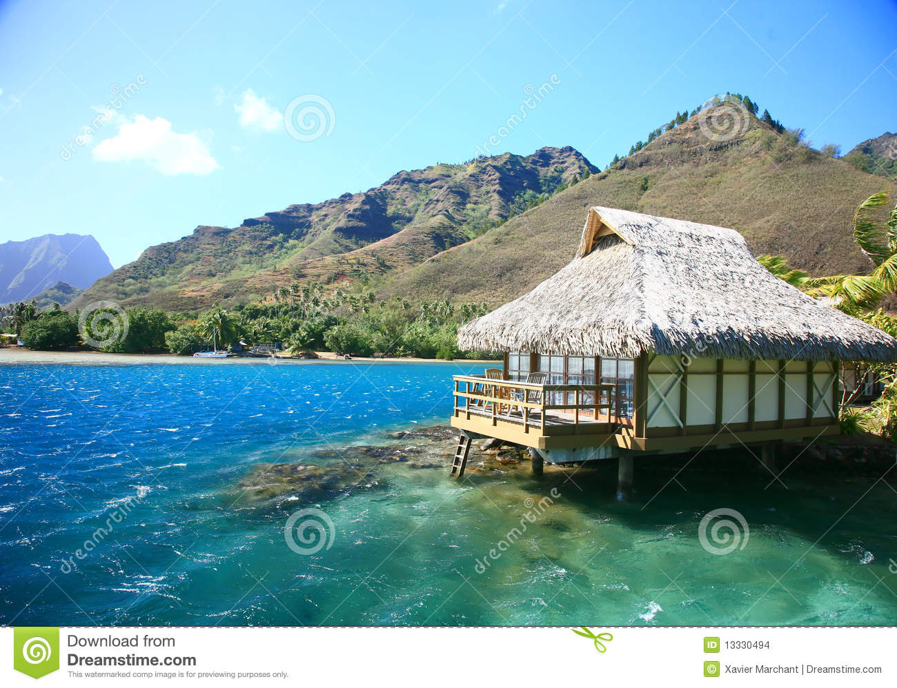 Ocean house stock photo. Image of white, limpid, palm ...
