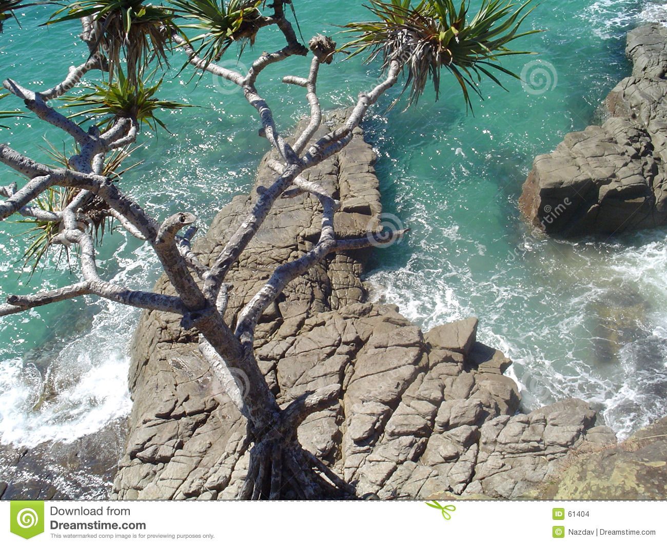 Ocean At Noosa Stock Images - Image: 61404
