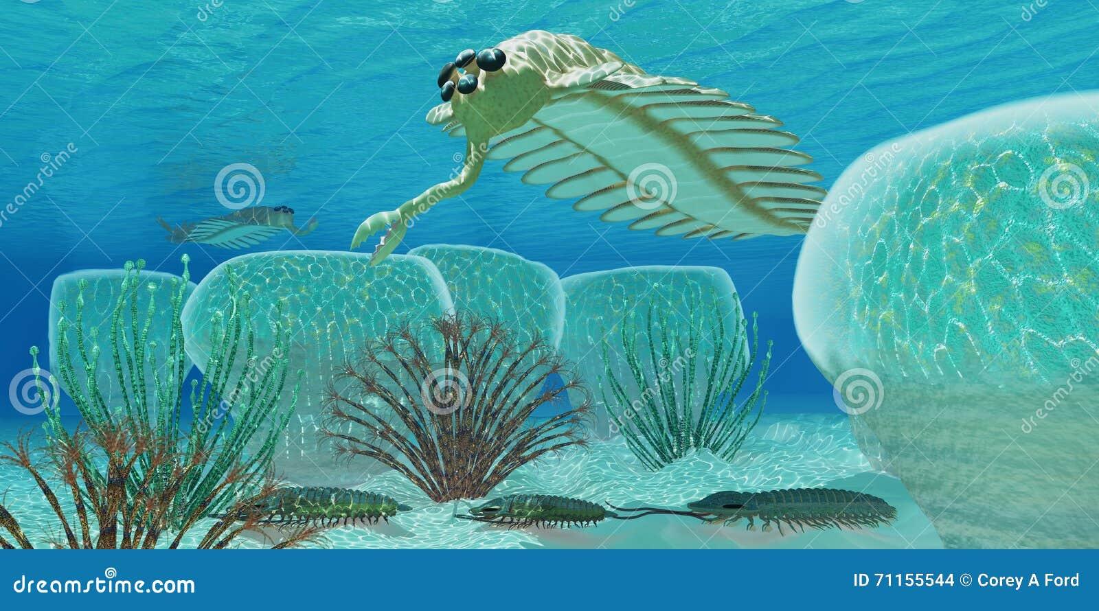 Ocean Opabinia Stock Illustration Illustration Of Animal