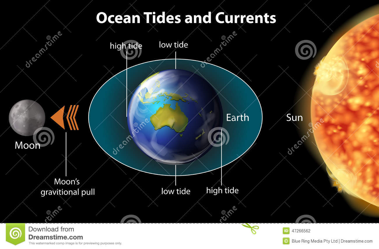 Ocean Tides And Currents Stock Vector - Image: 47266562
