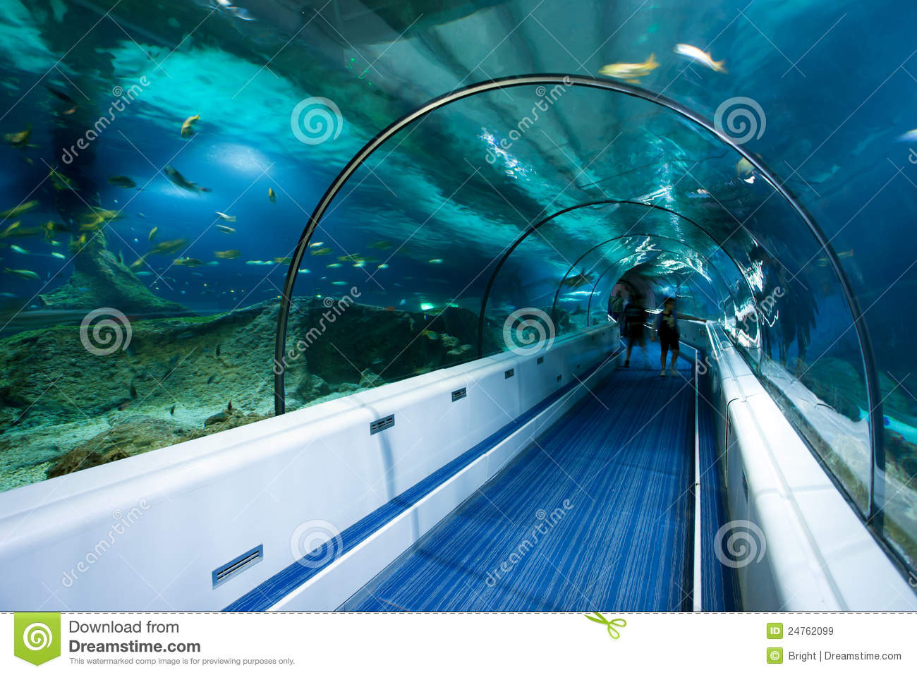 map of chunnel with Royalty Free Stock Images Ocean Tunnel Image24762099 on Eurostar train rail maps additionally Celta Day 10 Half Way Thru additionally The Chunnel also Eurostar also 138063544802300056.