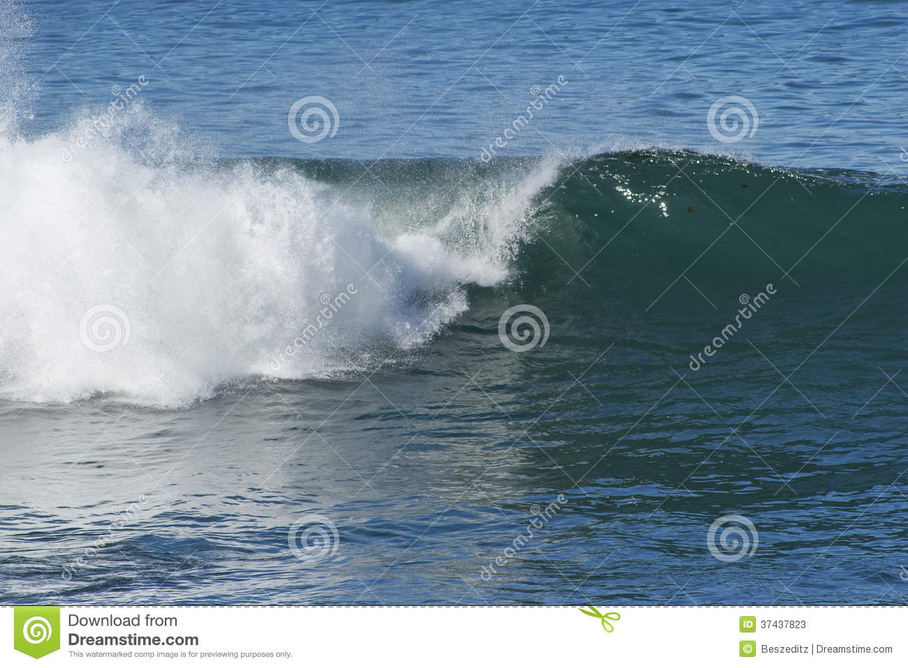 Ocean wave with the curl starting on one end and white water splashing ...