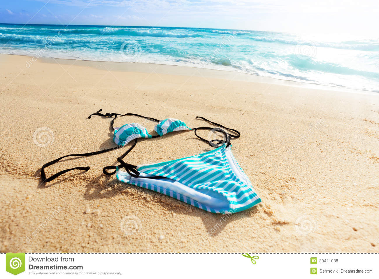Ocean And Women Swimsuit Stock Photo Image Of Accessory