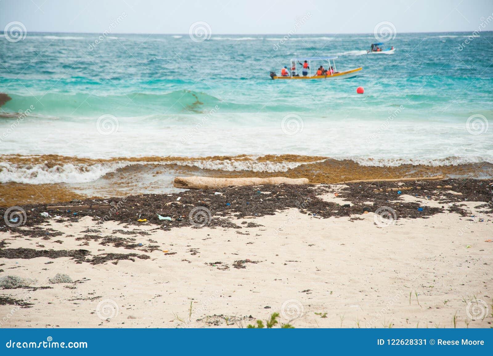 Oceanu klingeryt na brzeg