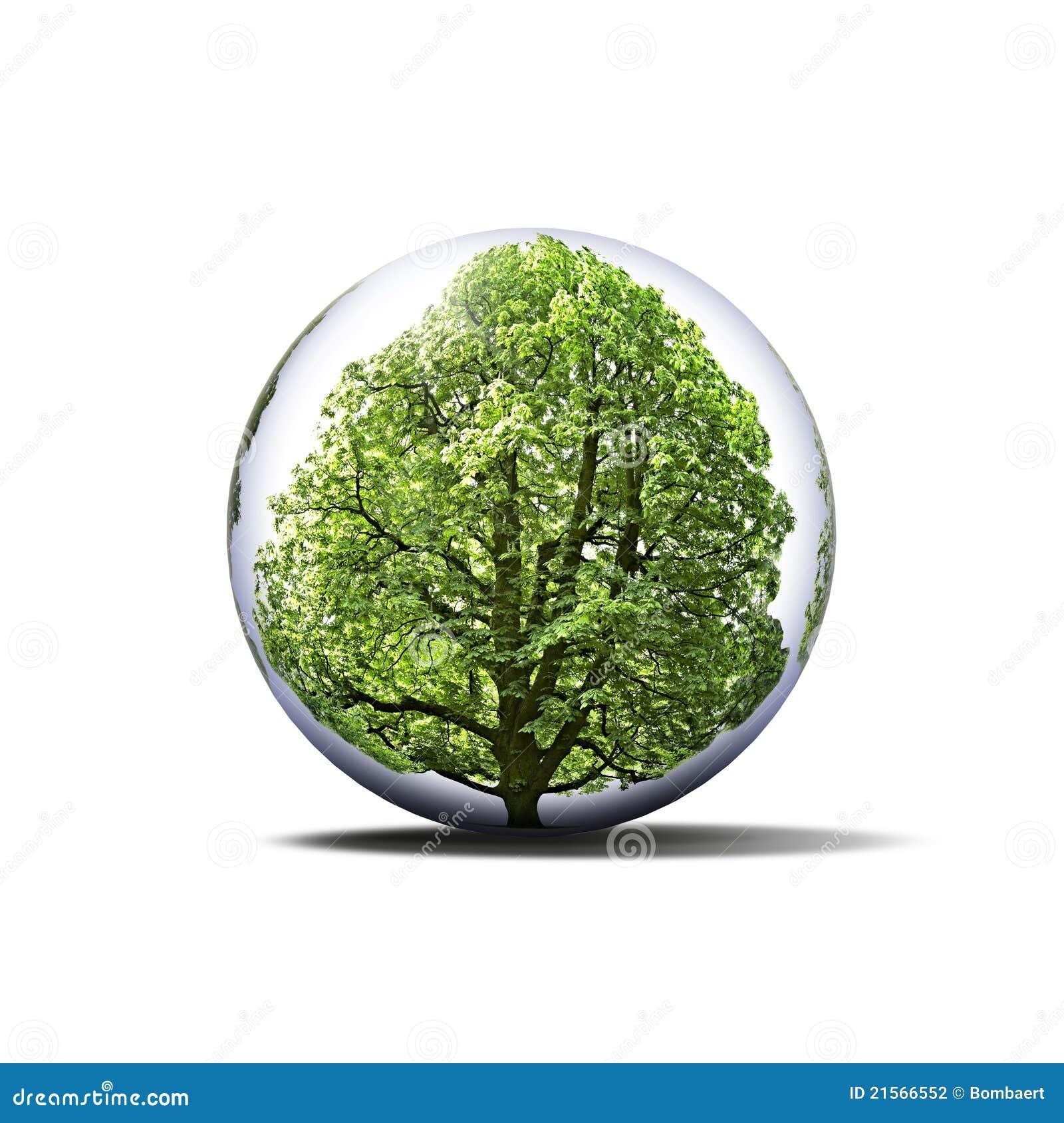 Ochraniający drzewo