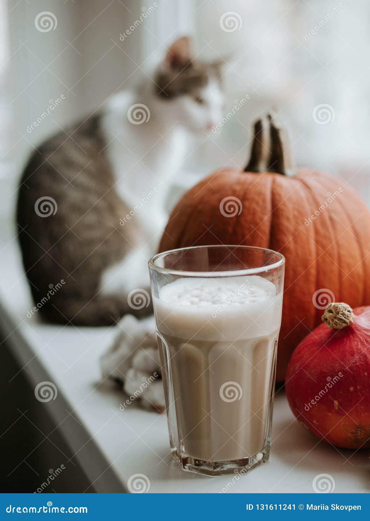 Ochtend met kop van koffie met pompoen en kattenzitting op de vensterbank