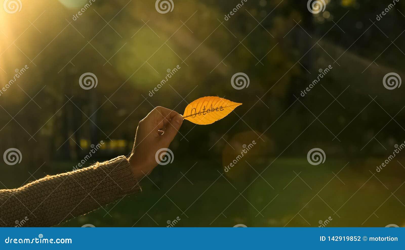 October written on golden autumn leaf, hand holding writings, bright fall season