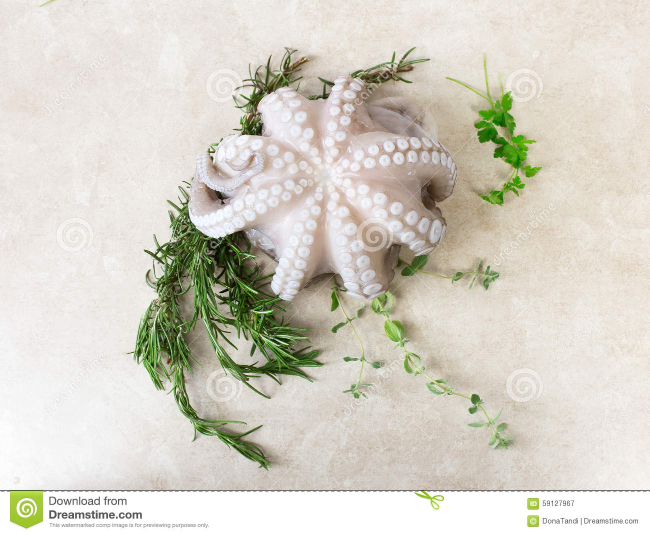 Octopus with aromatic herbs stock photo image 59127967 for Aromatic herb for fish