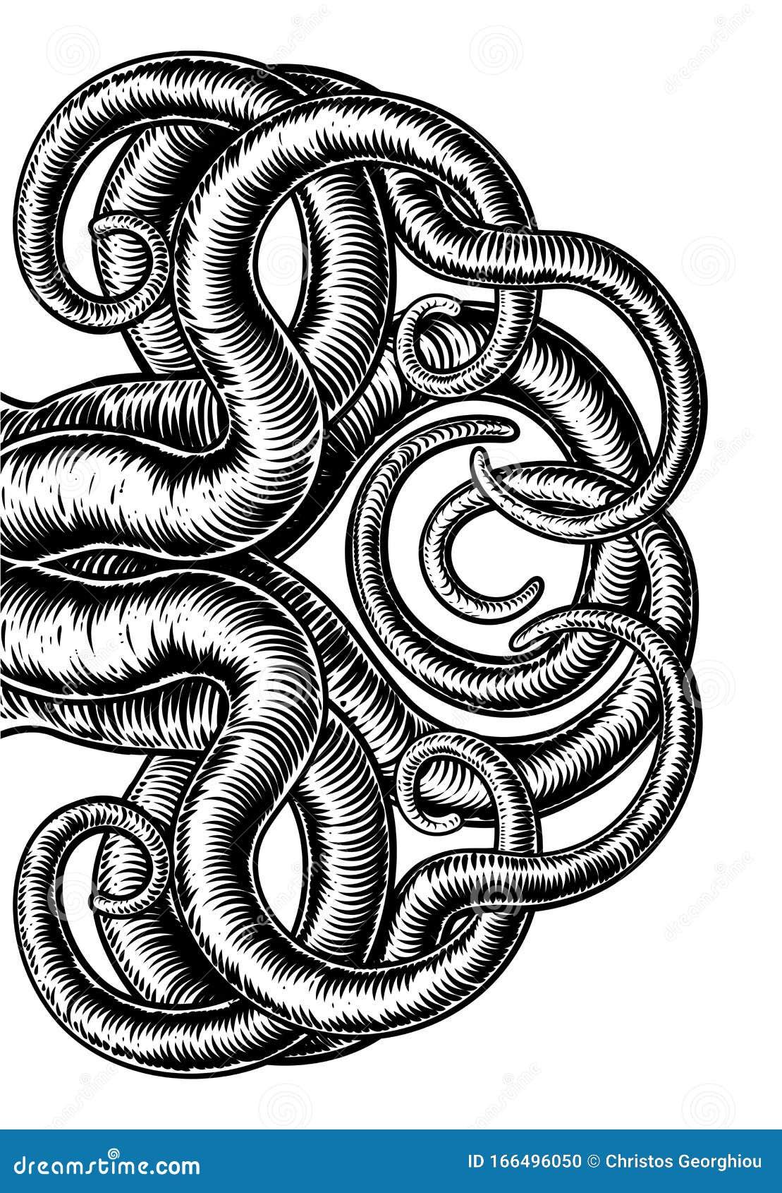 Zeichnen tintenfisch 39 Fantasy