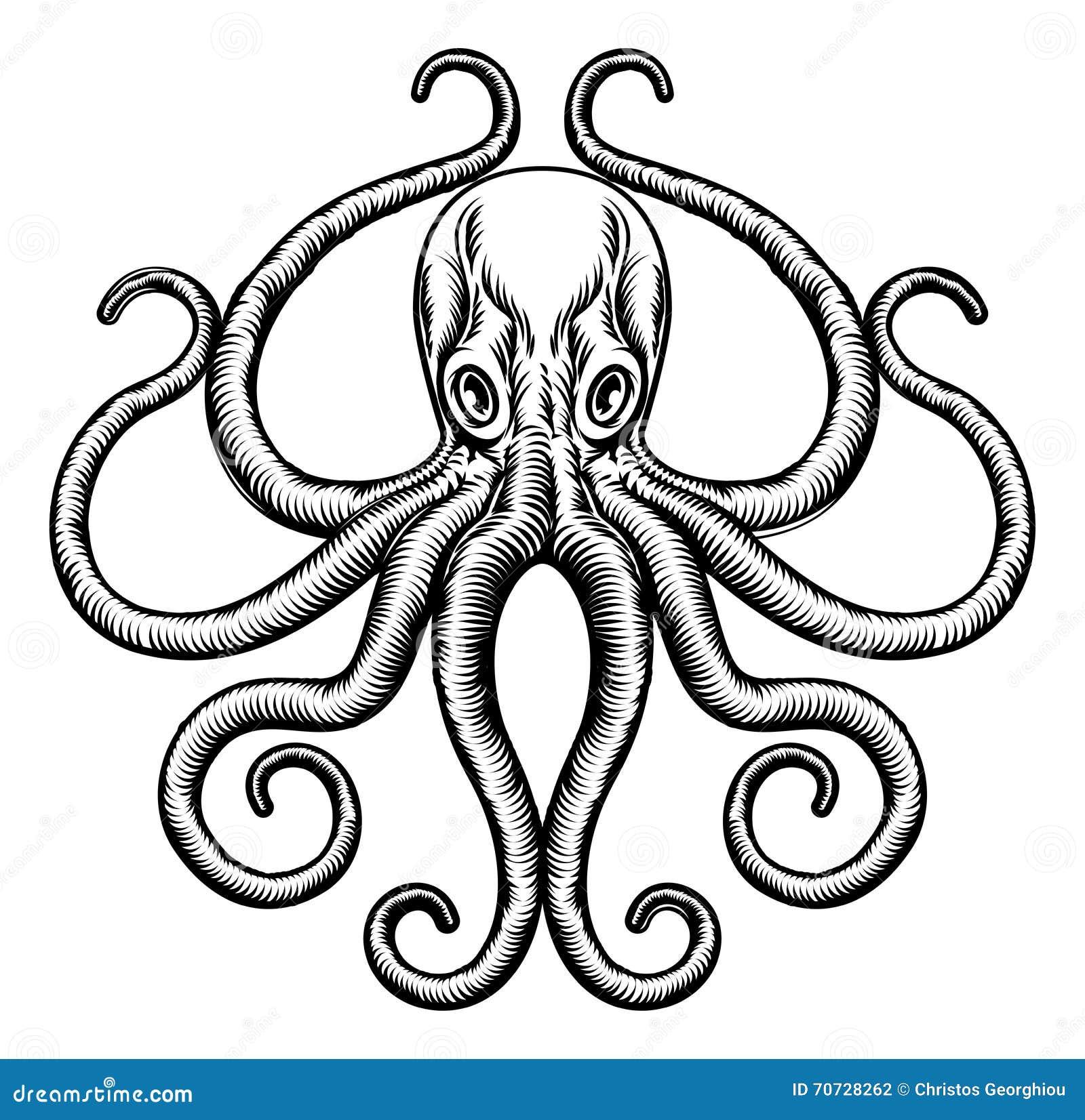 Octopus of Pijlinktvisillustratie