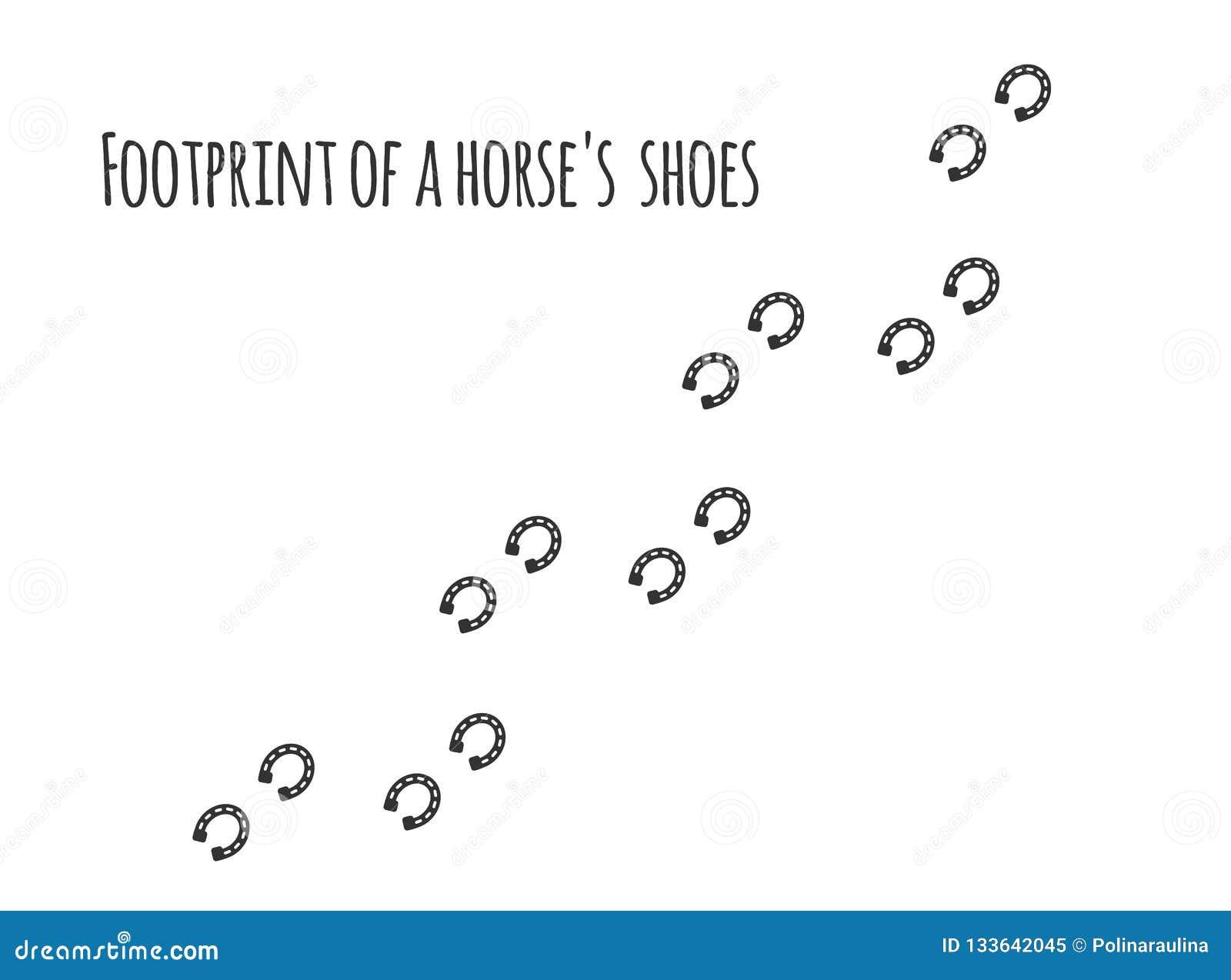 Odcisk stopy konia buty