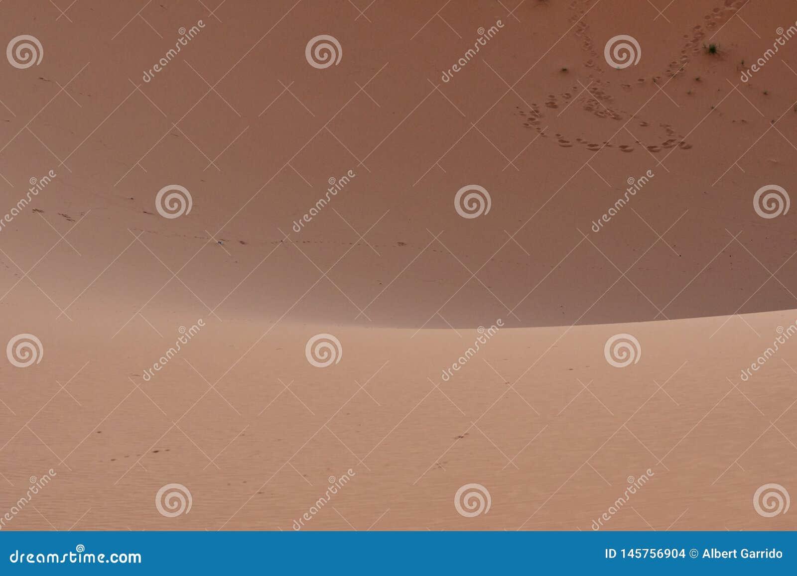 Odciski stopy na pustynnym piasku