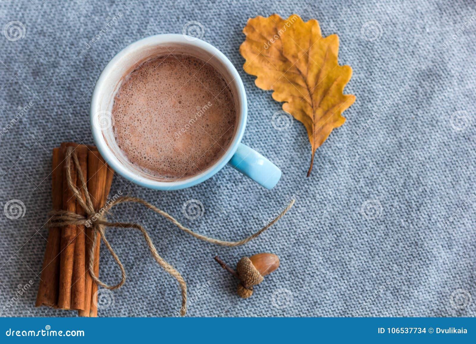 Odgórnego widoku jesieni składu kakao filiżanka