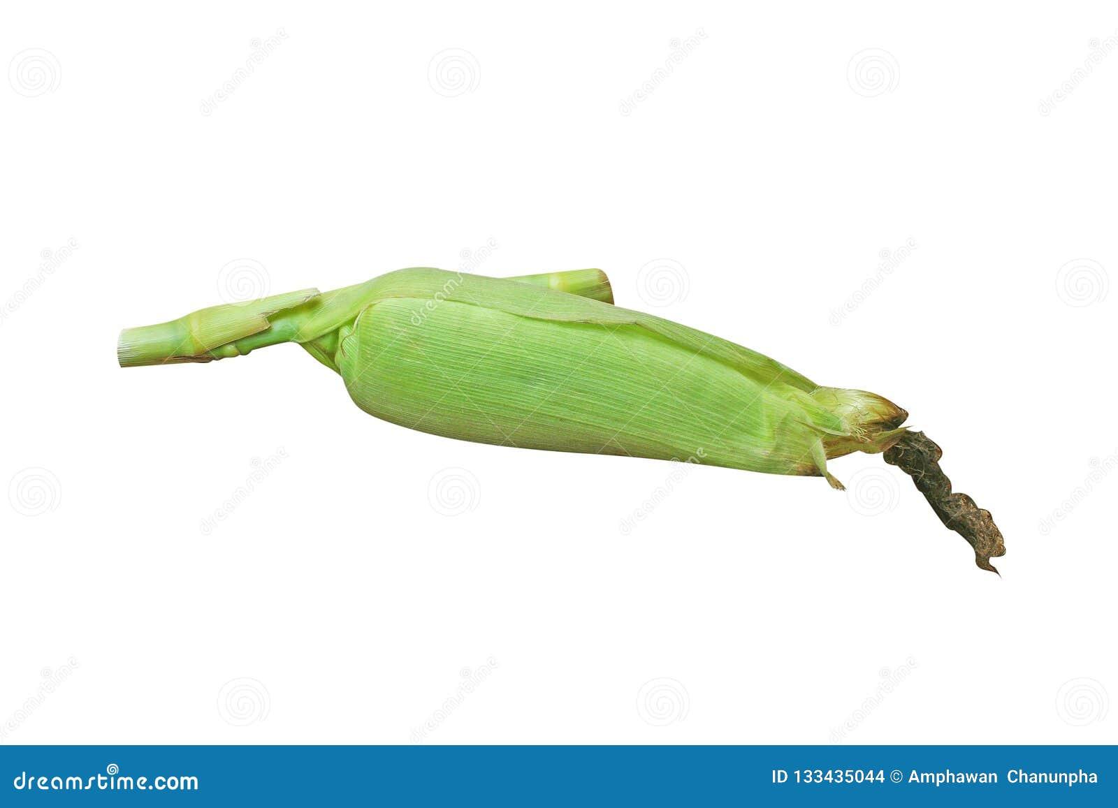 Odgórnego widoku surowa kukurudza