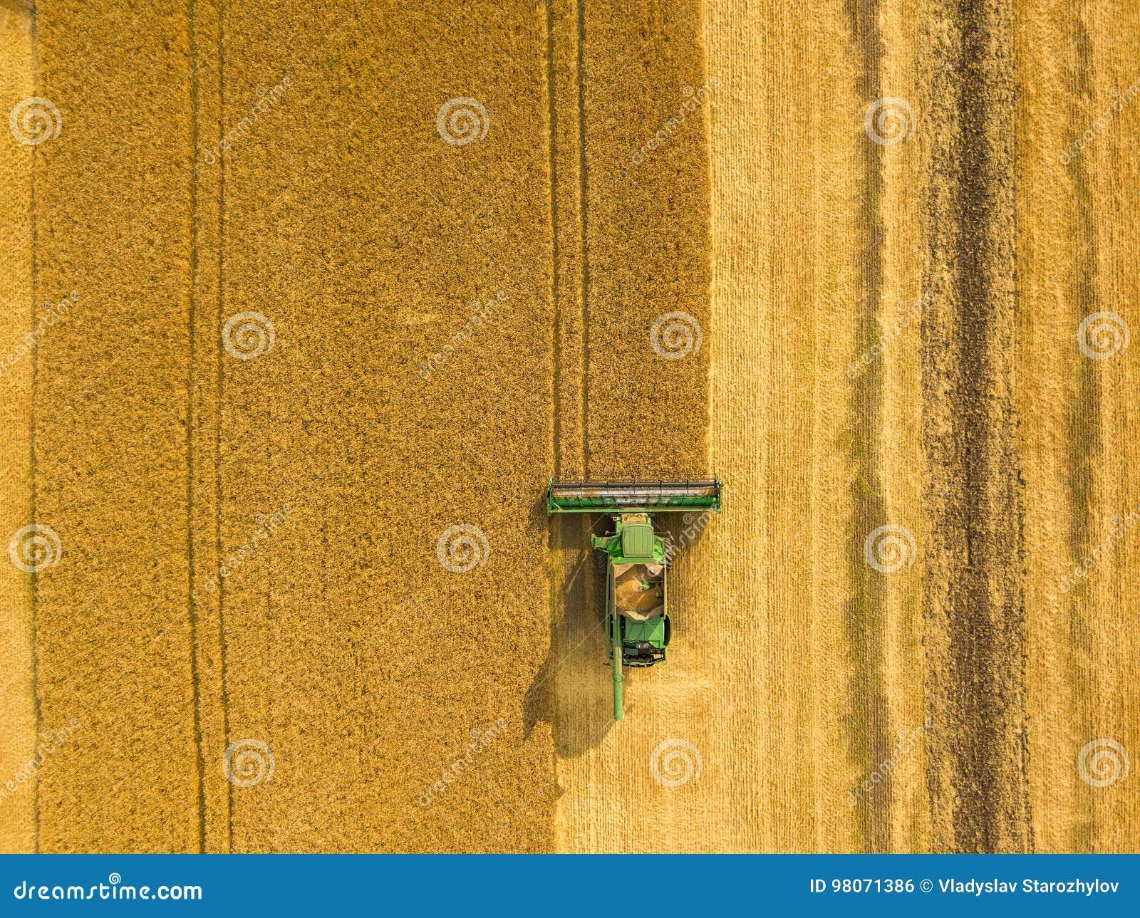 Odgórnego widoku syndykata żniwiarz zbiera banatki przy zmierzchem Harvesti