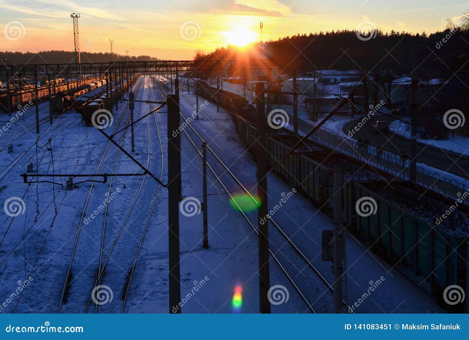 Odgórny widok kolejowa zajezdnia z frachtowymi samochodami