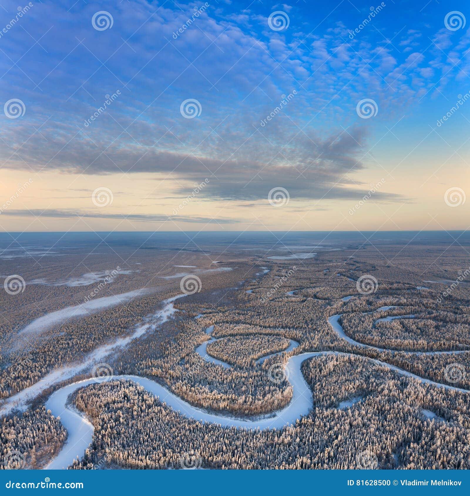 Odgórny widok lasowa rzeka w zimie