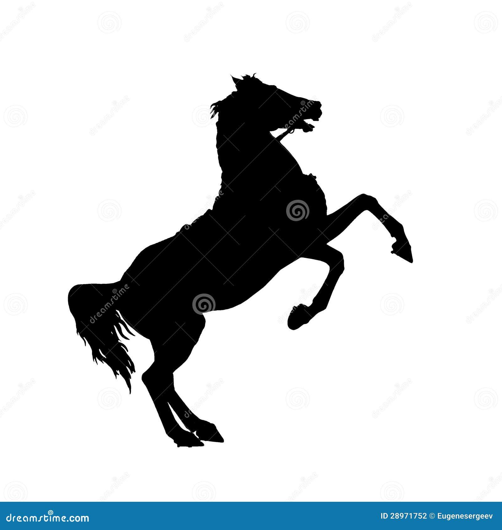 Odizolowywający na białej czarnej końskiej sylwetce