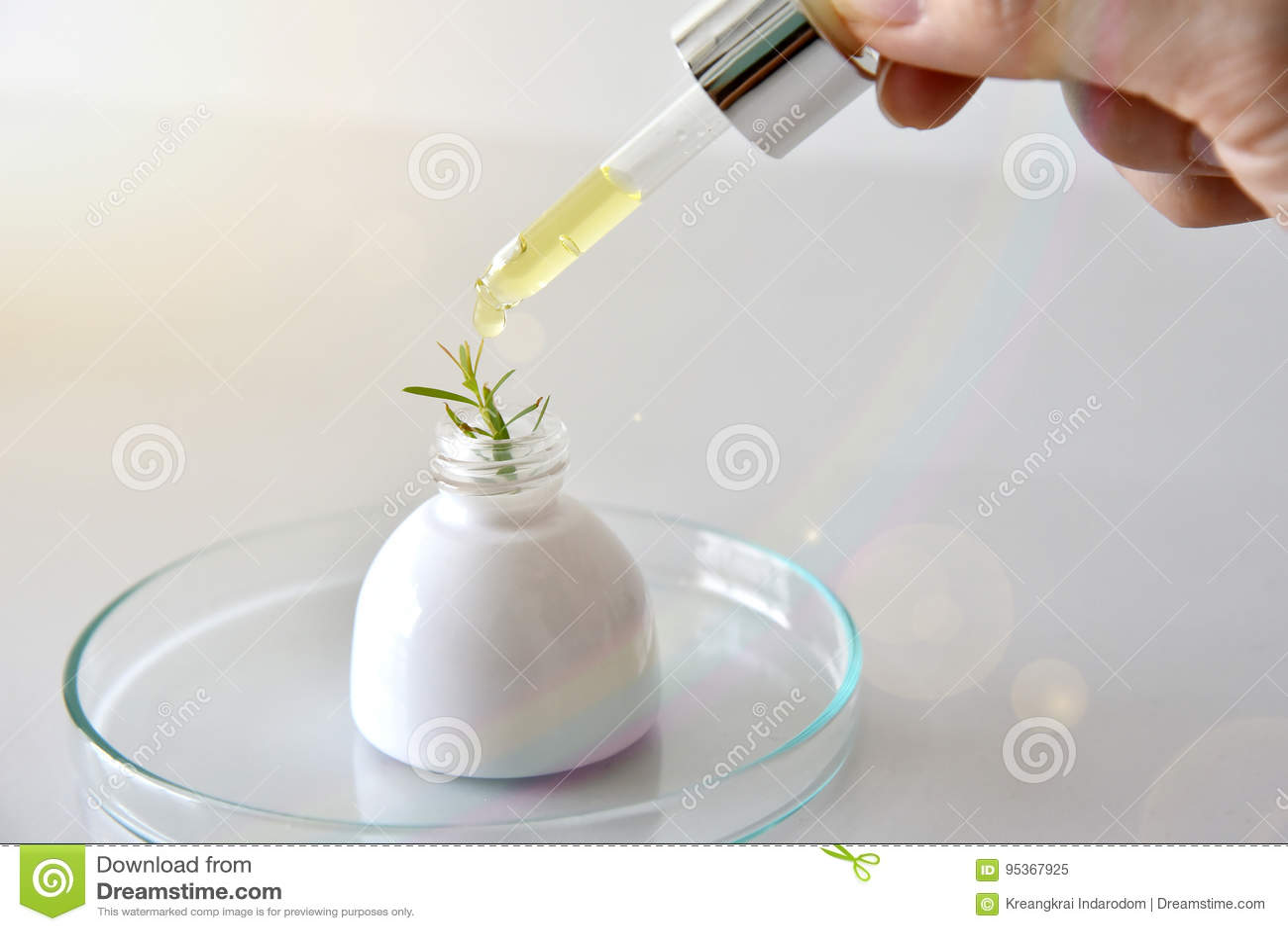 Odmłodnieć nafcianą kroplę, alternatywy zielona zielarska medycyna, Naturalni skóry opieki piękna produkty