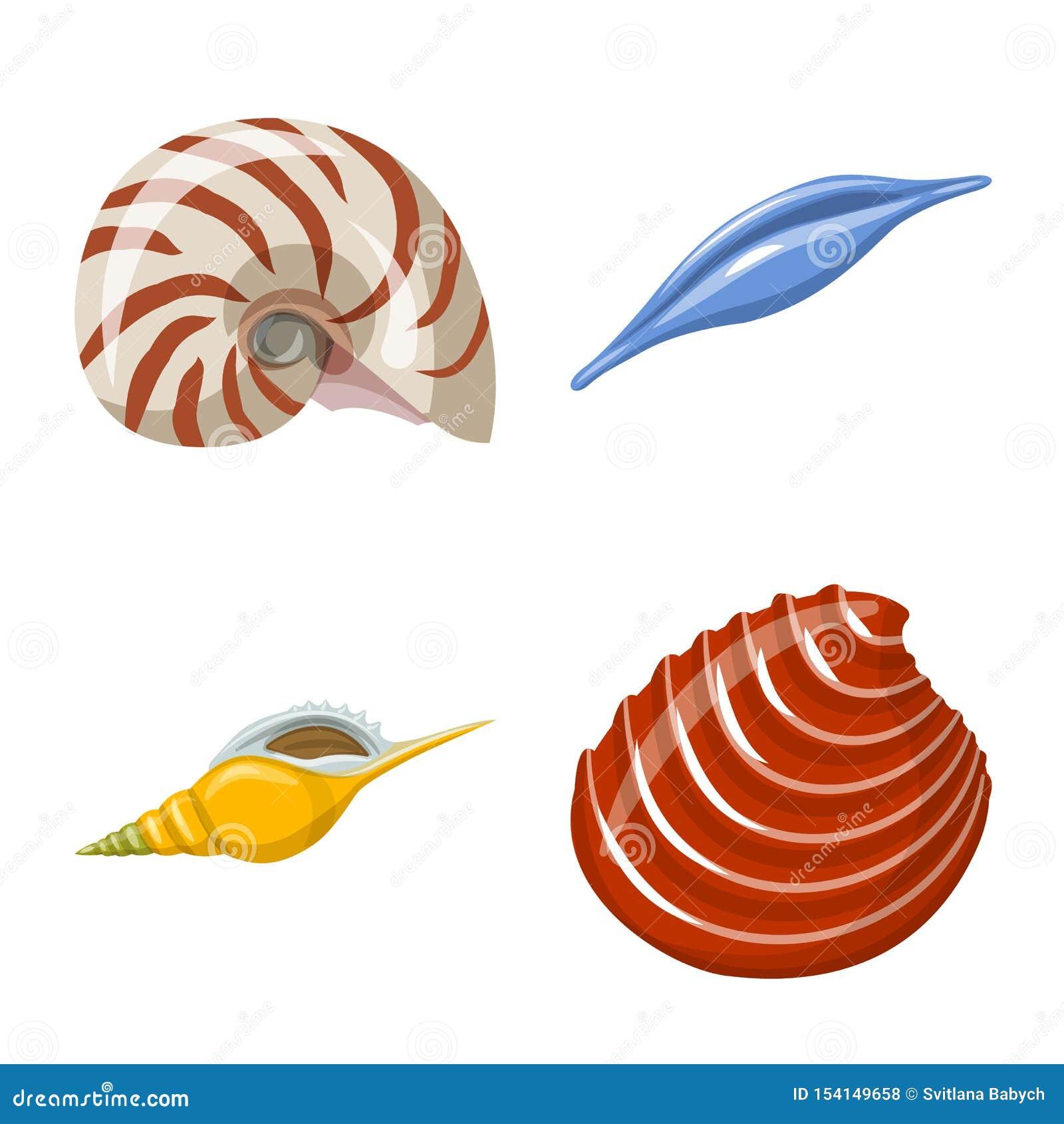Odosobniony przedmiot seashell i mollusk symbol Kolekcja seashell i owoce morza akcyjna wektorowa ilustracja