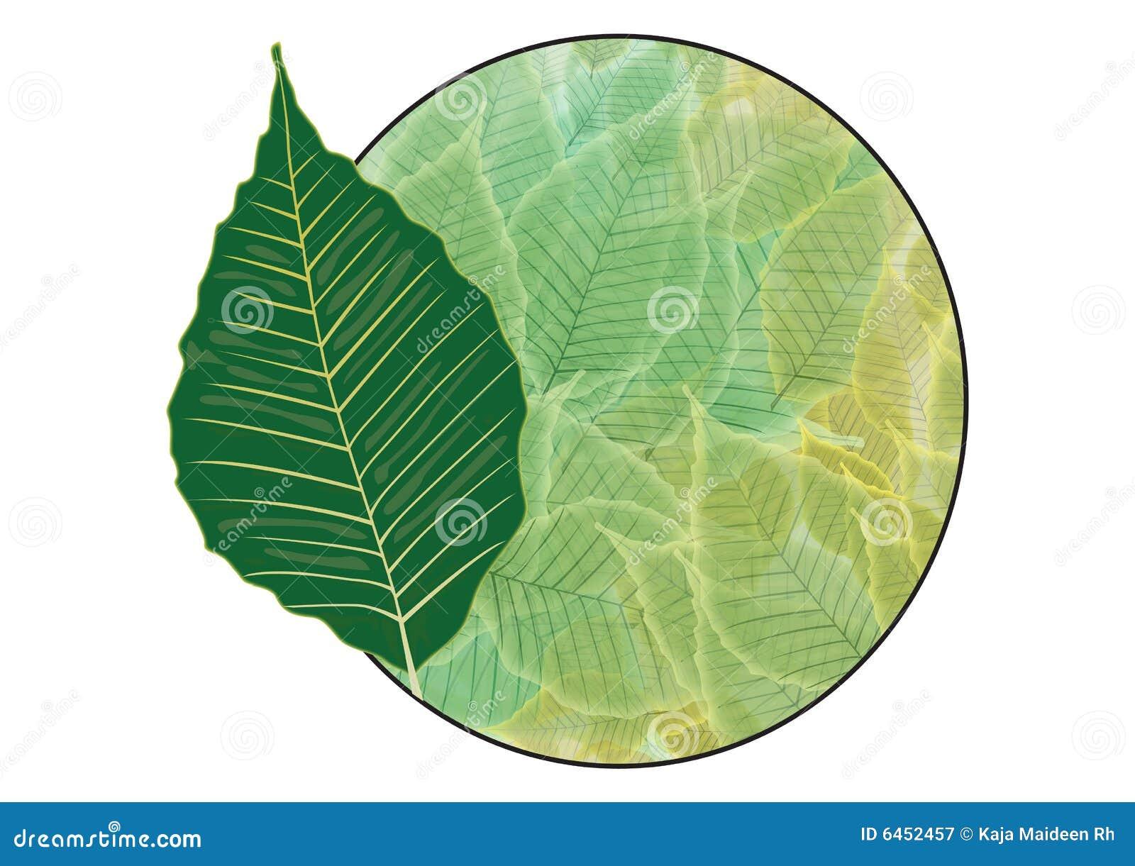 Odznaka zielone liści
