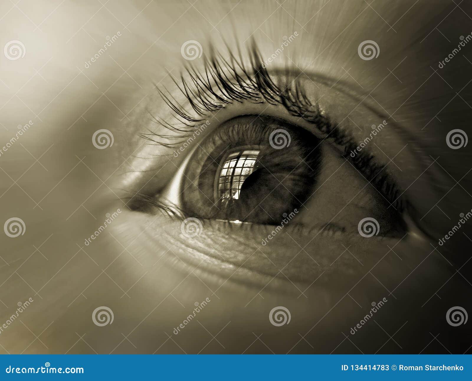 Oeil du plan rapproché d enfant, avec la réflexion de la fenêtre dans elle
