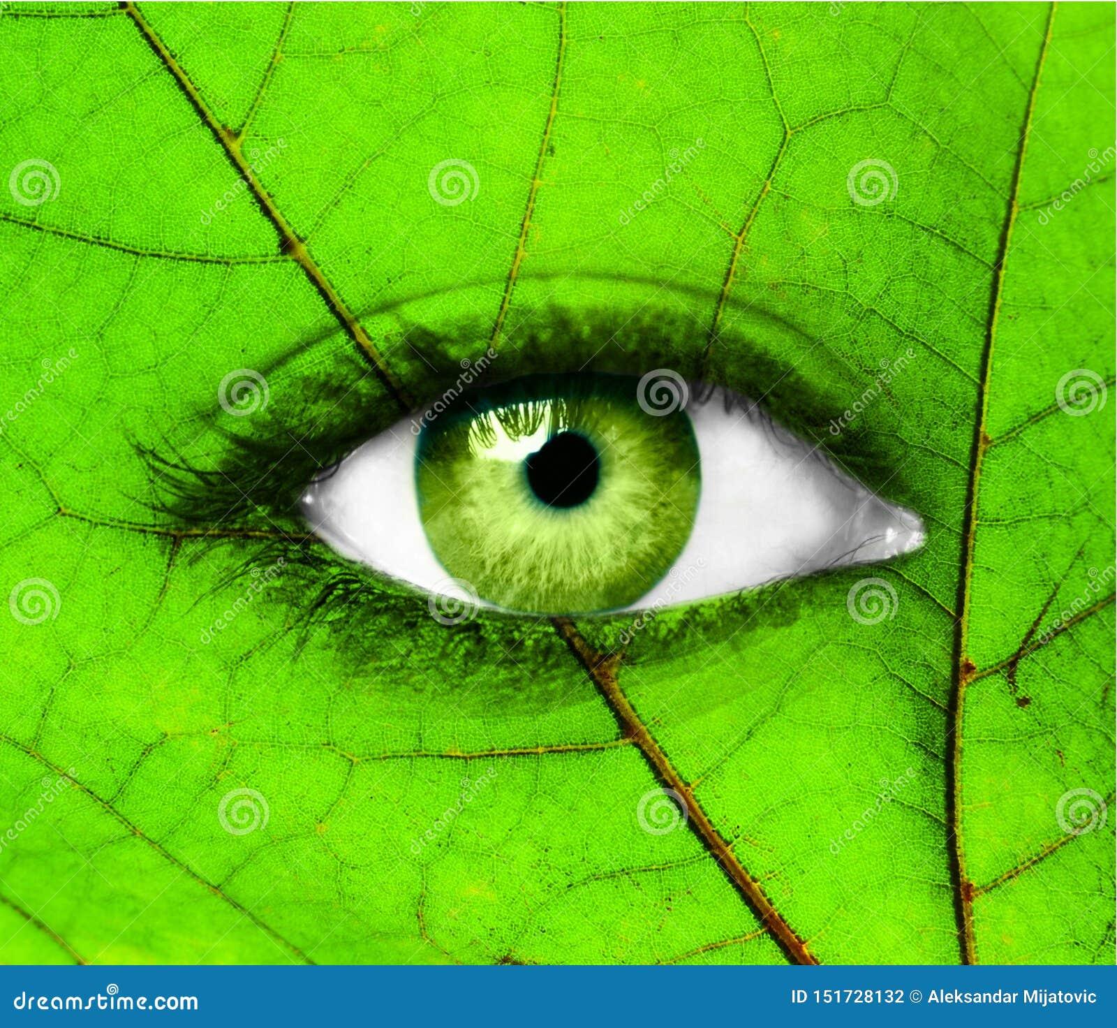 Oeil humain vert avec la feuille - concept d écologie