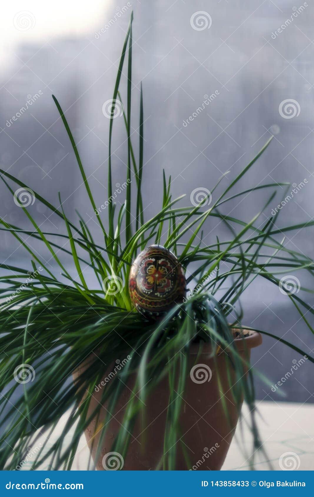Oeuf de noir de Pâques avec un modèle fait main dans une herbe verte, usine