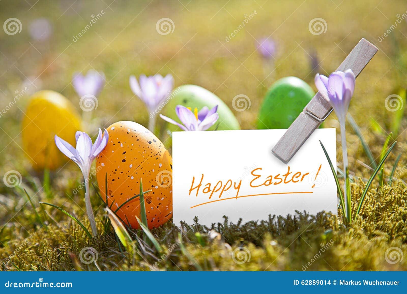 Oeufs de pâques avec le mot Joyeuses Pâques