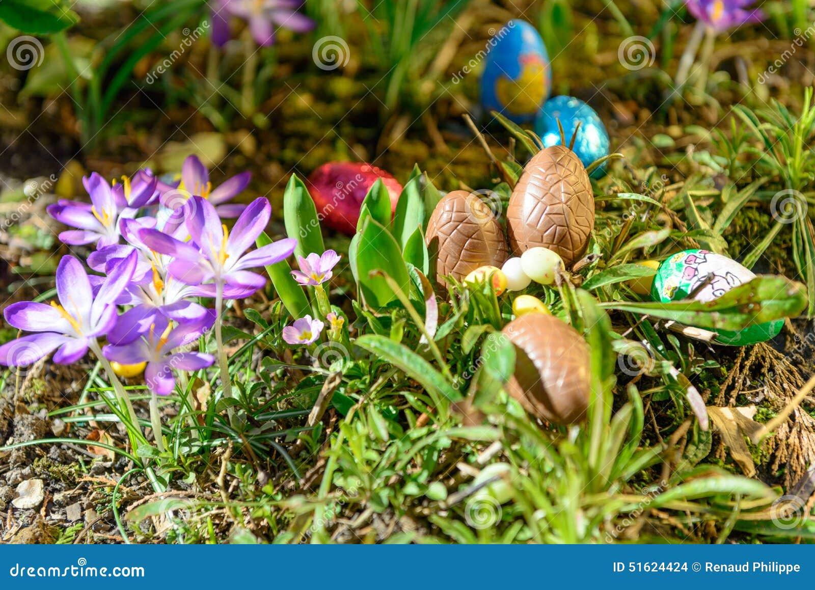 Oeufs de p ques de chocolat dans un jardin photo stock for Dans in jardin