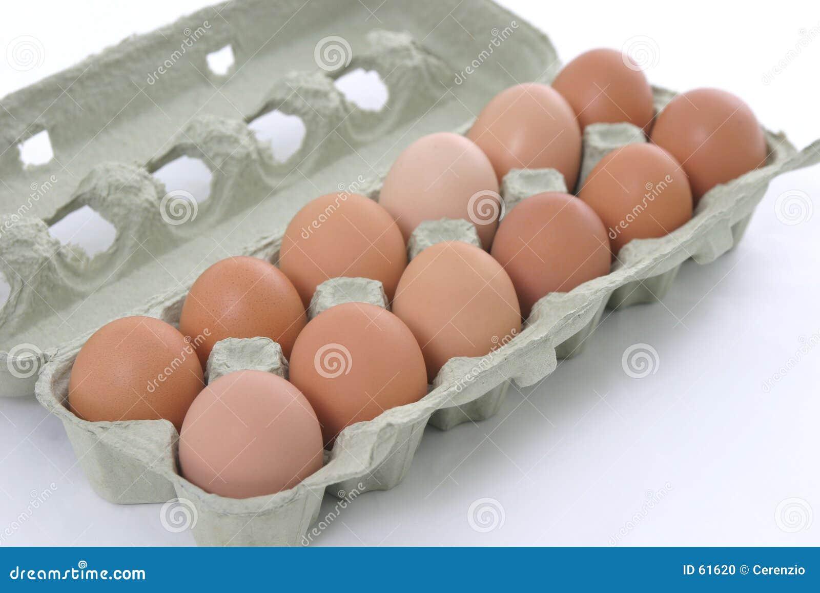 Download Oeufs normaux photo stock. Image du ferme, douze, poulets - 61620