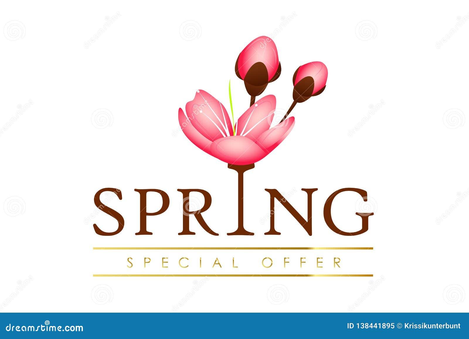 Oferta especial da tipografia da mola com as pétalas cor-de-rosa de florescência das flores da cereja