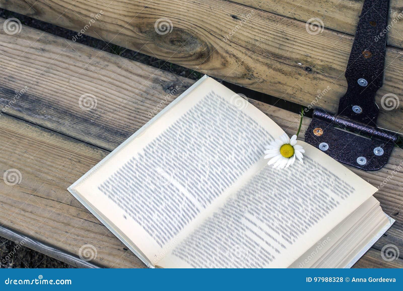 Offenes Buch mit einem Bookmark - eine Gänseblümchenblume