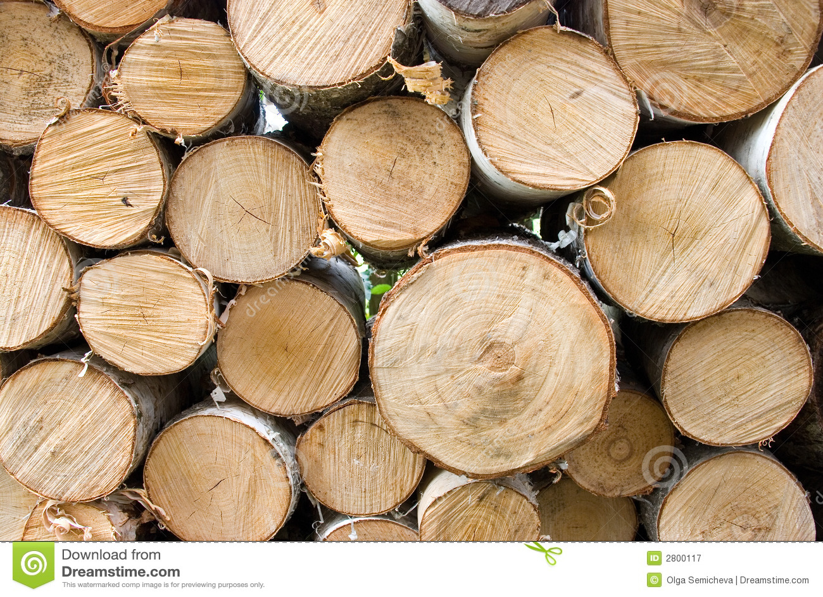 Ogień brzozy drewna