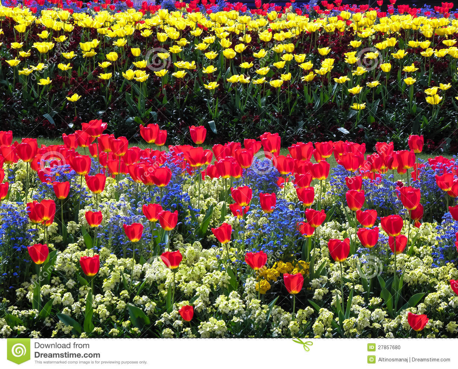 Ogród kwiat