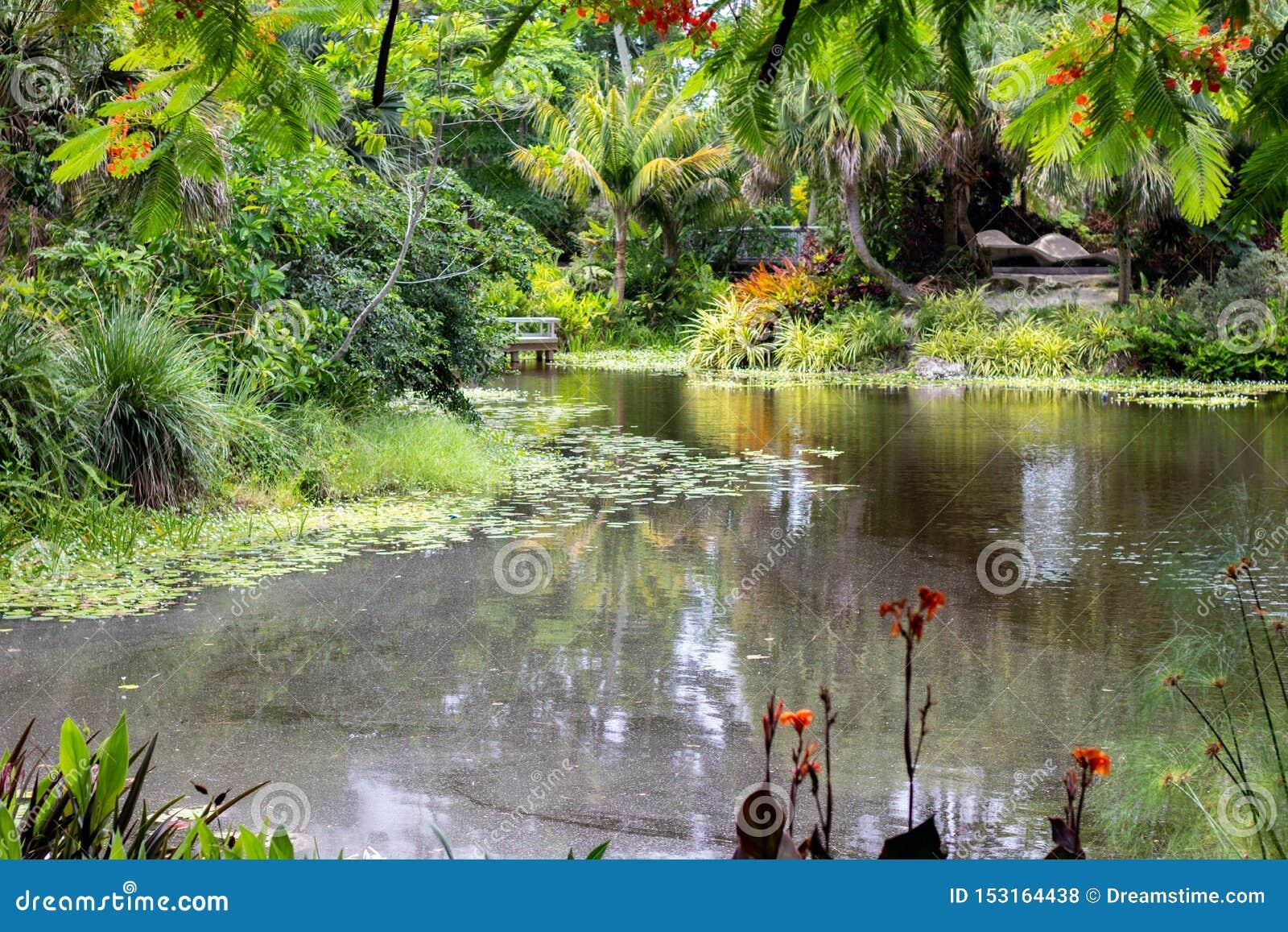 Ogródu botanicznego krajobraz w Florida