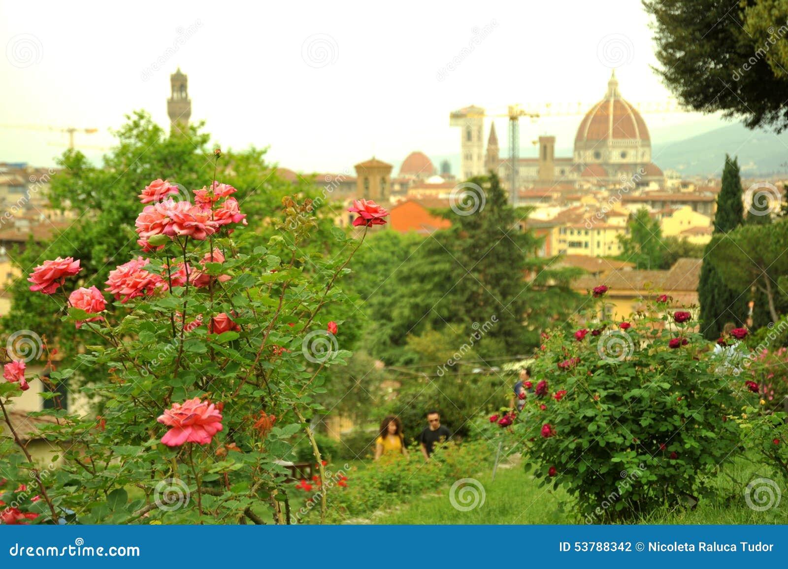 Ogródy różani w Florencja mieście, Włochy