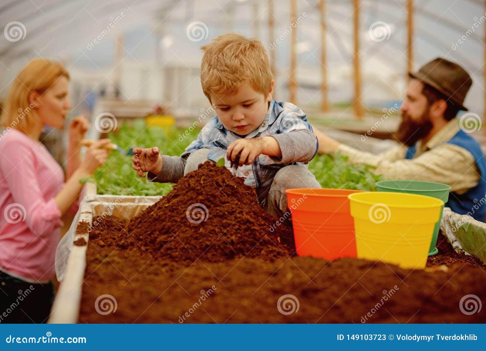 Ogrodnik troch? ma?a ogrodniczki praca z ziemi? ma?a ogrodniczka w szklarni mali ogrodniczki dziecka flancowania kwiaty