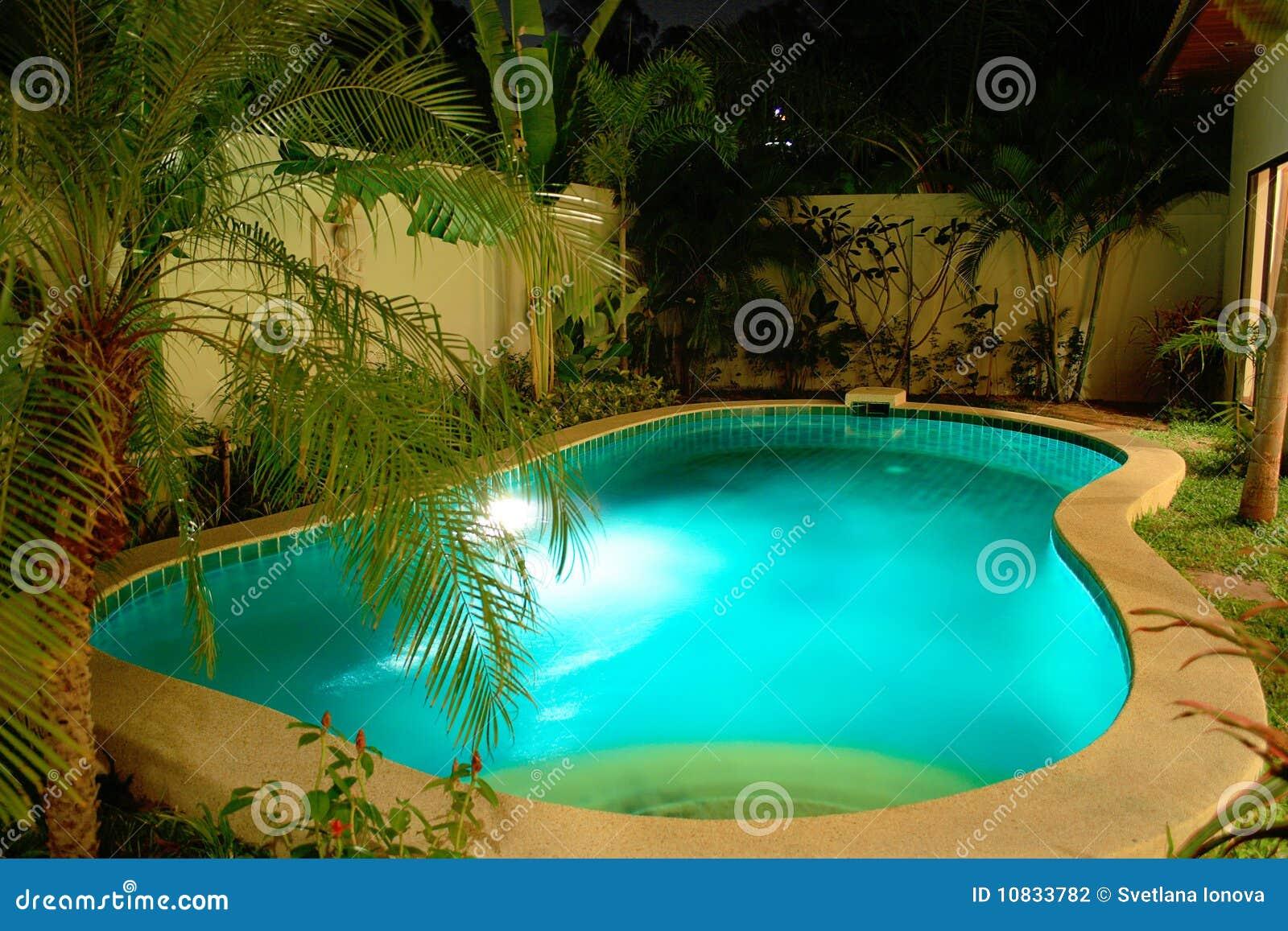 Ogrodowy noc basenu dopłynięcie tropikalny