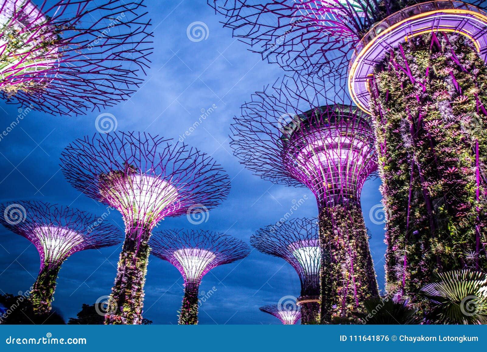 Ogrodowy rapsodu przedstawienie, ogród zatoką, Singapur