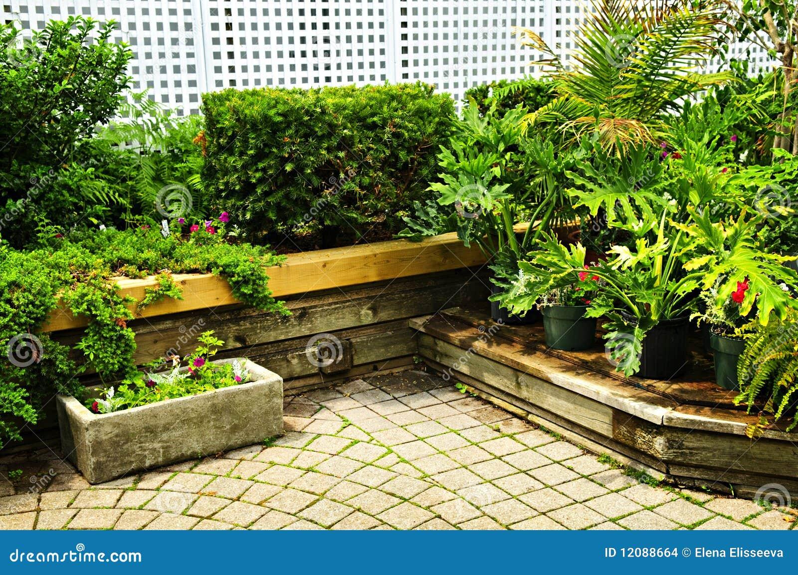 Ogrodowy zielony bujny