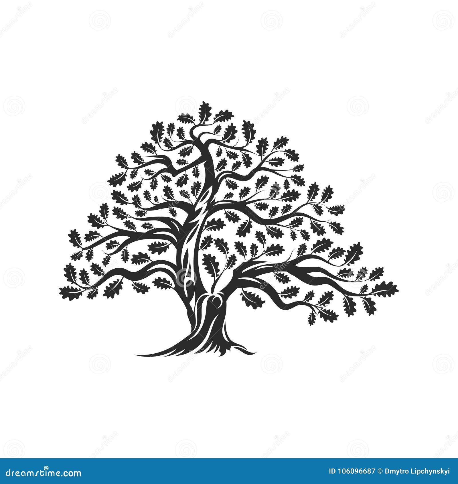 Ogromna i święta dębowego drzewa sylwetki loga odznaka odizolowywająca na białym tle