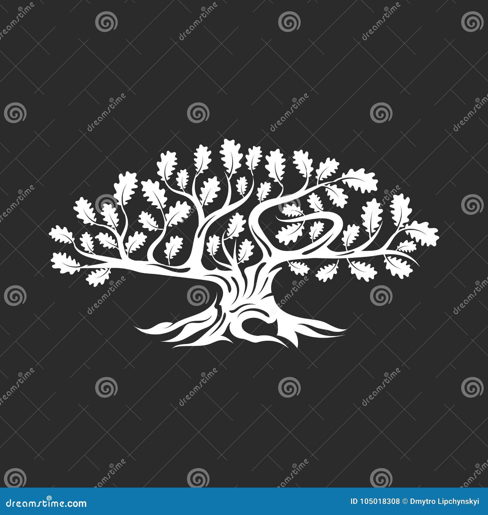 Ogromny i święty dębowego drzewa sylwetki logo odizolowywający na ciemnym tle