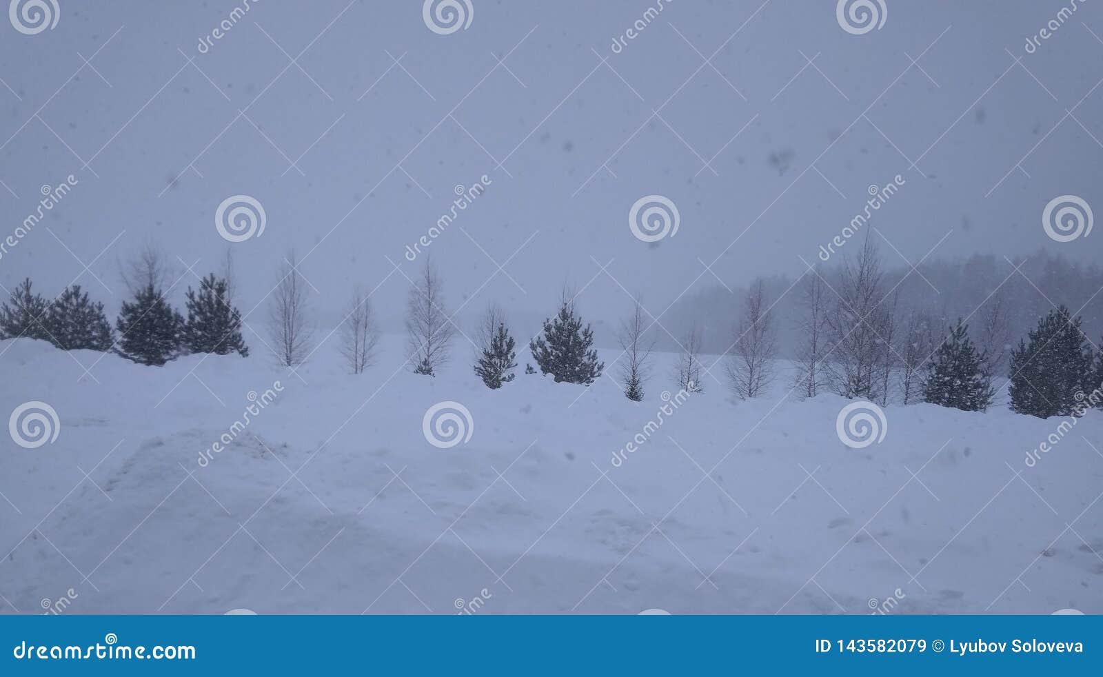 Oh, deze sneeuwstorm in het Russische dorp