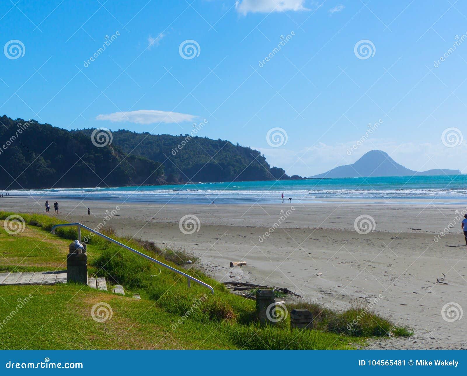 Beach scene New Zealand