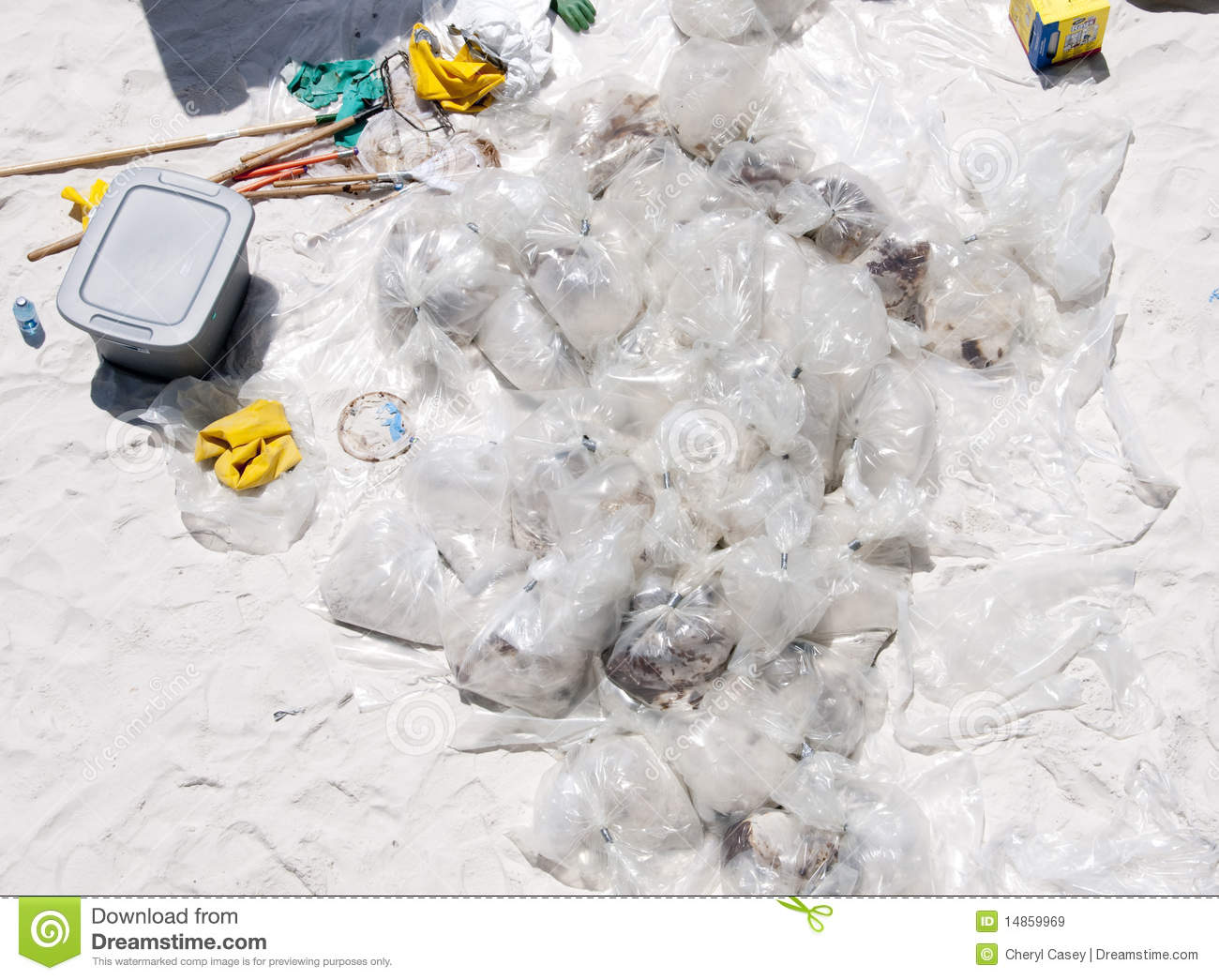 Download Oil Collected On Pensacola Beach Editorial Stock Image - Image of petroleum, boom: 14859969