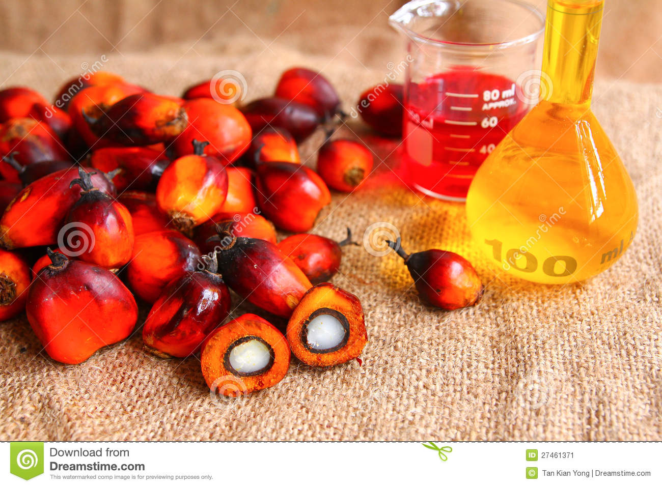 Oil Palm Fruits With Palm Oil Stock Image - Image: 27461371