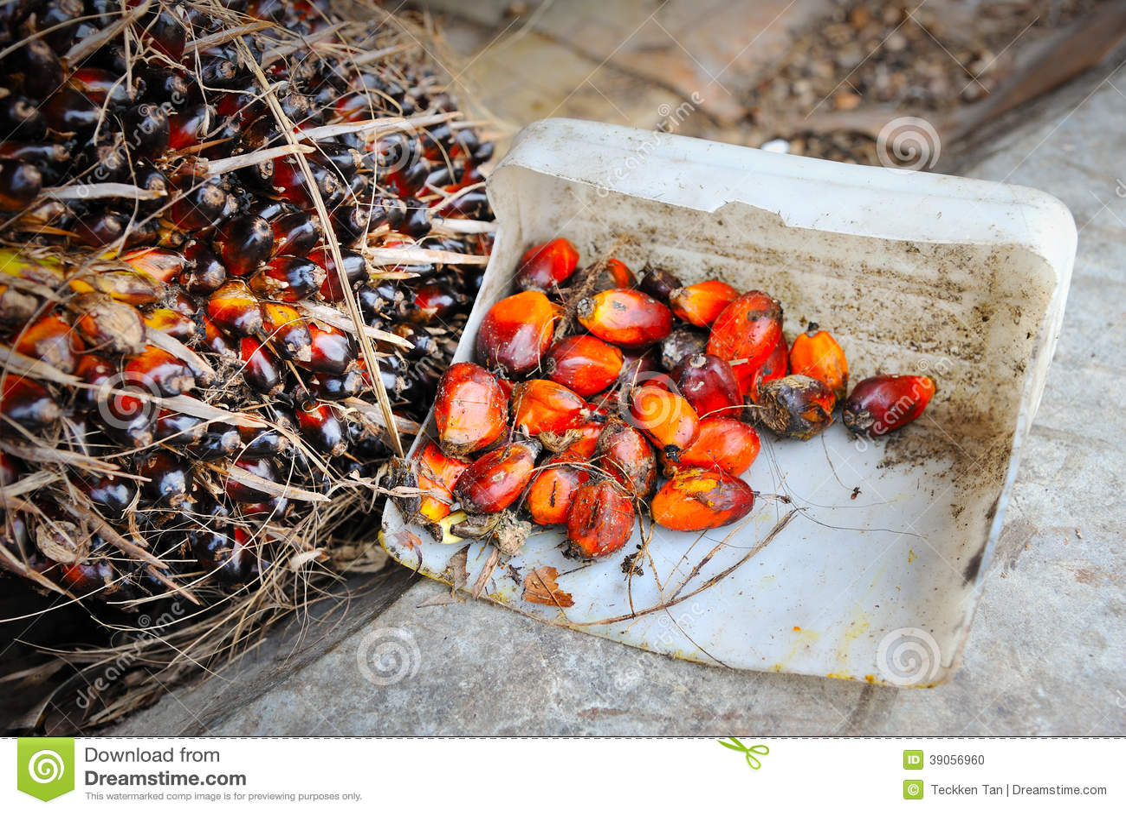 palm fruit oil healthy fruit desserts recipes