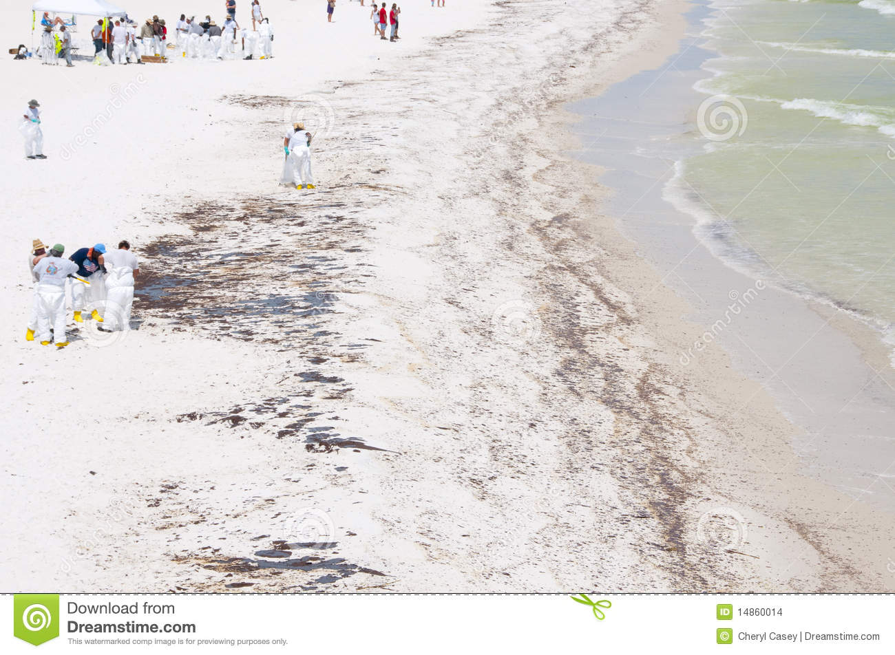 Oil spill workers at seashore